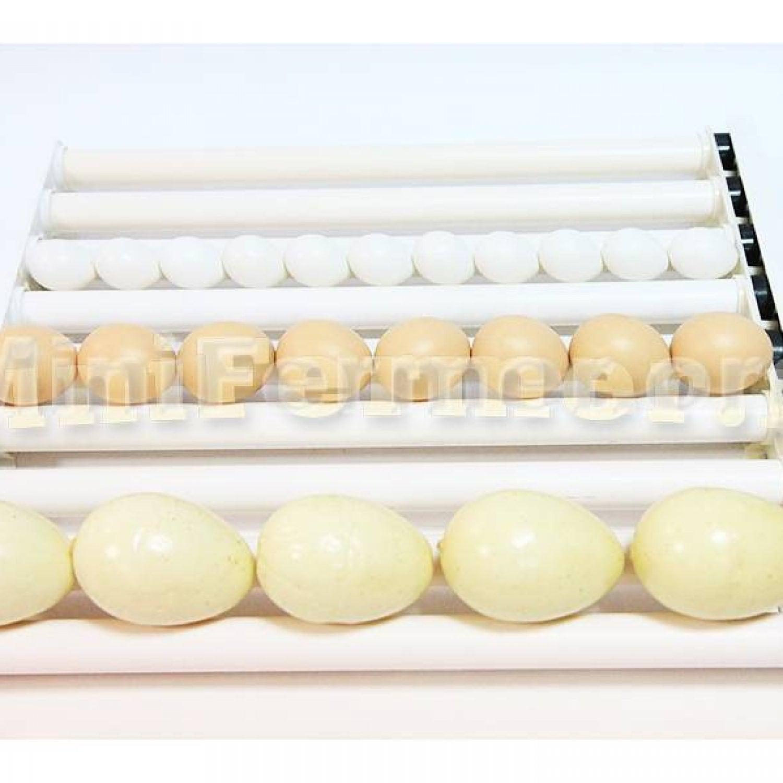 Лоток с мотором, универсальный для любых яиц