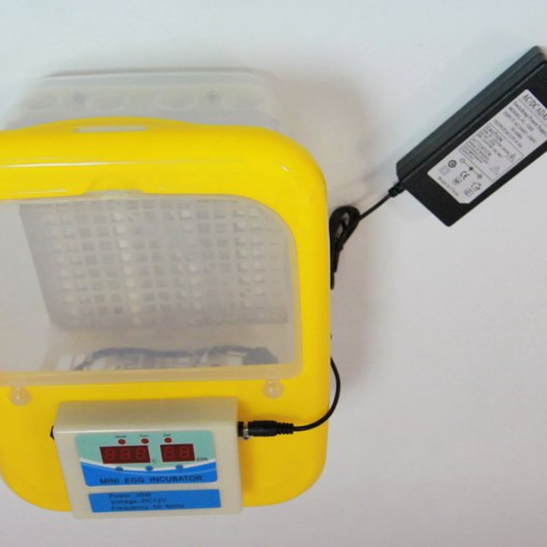 Инкубатор для яиц автоматический И-9