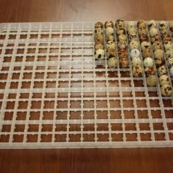 Лоток для перепелиных яиц (на 221 яйцо)